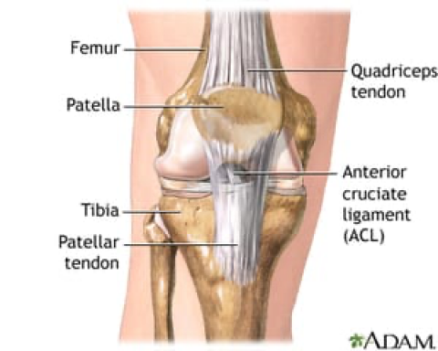Quadriceps Tendon Repair